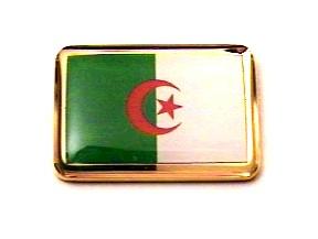 صورة اجمل علم في العالم F73LP68_algeria_flag_lapel_pin.jpg